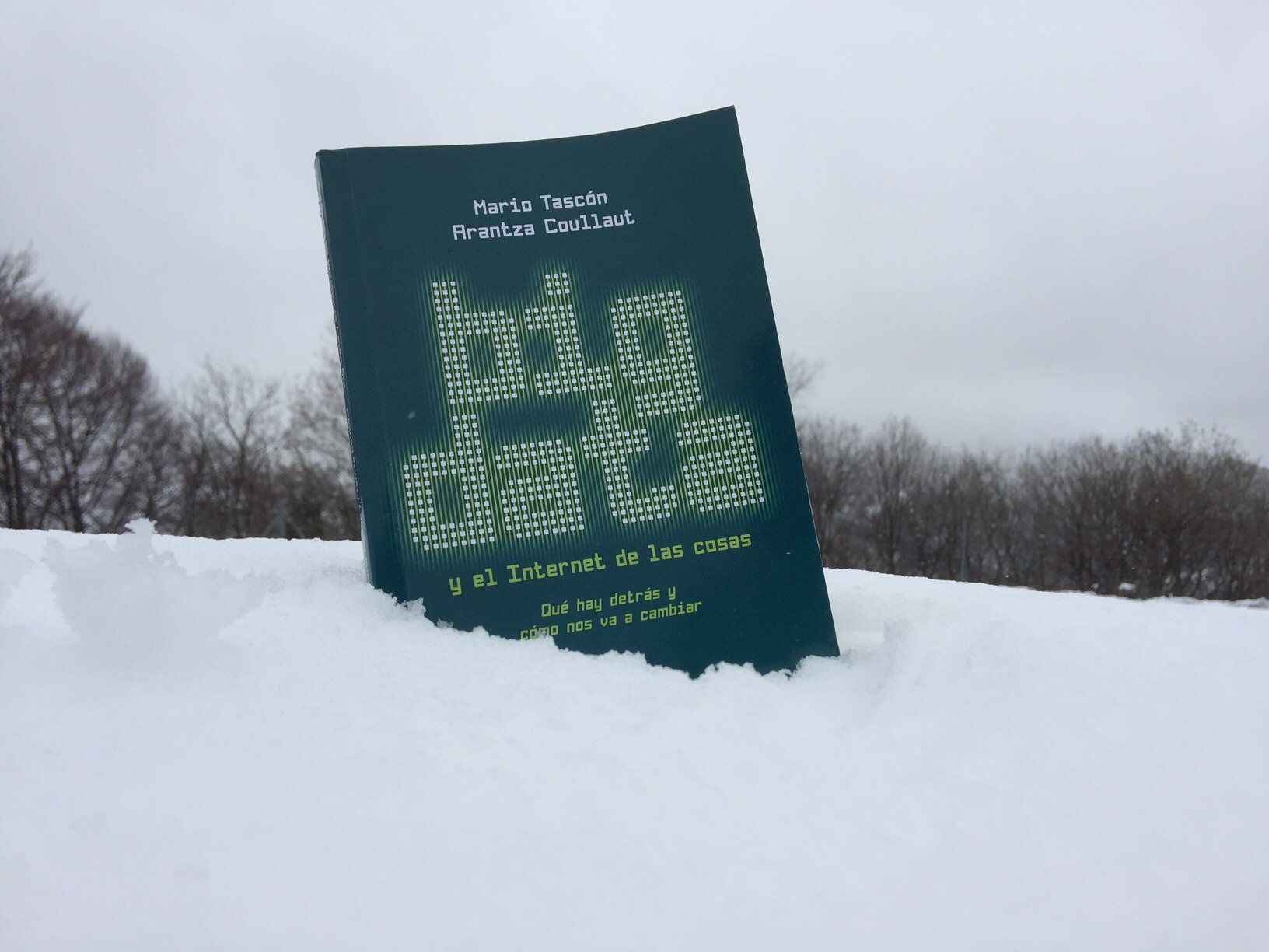 """Libro """"Big data y el internet de las cosas"""""""